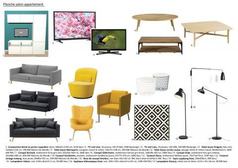 Planche mobiliers et accessoires pour l'appartement locatif. Le Salon.