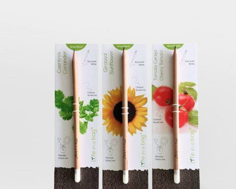 Profitez de votre crayons, plantez les et ils deviendront une jolie plante !